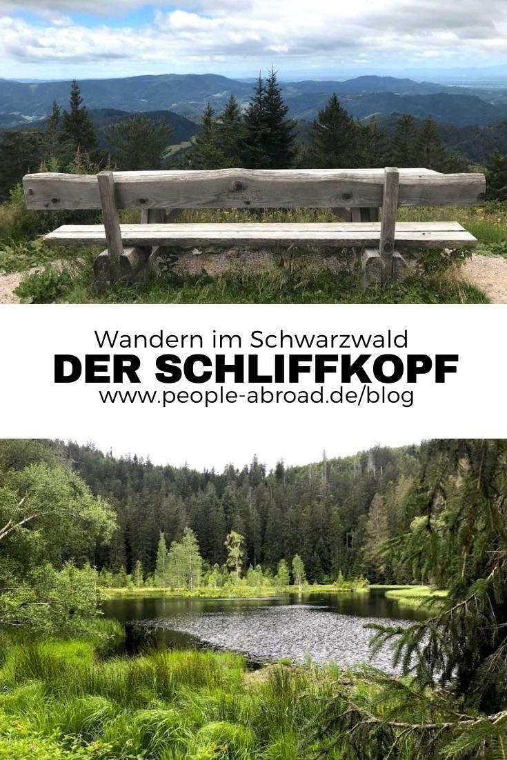 01.07.2019 11 - Wandern am Schliffkopf im Schwarzwald