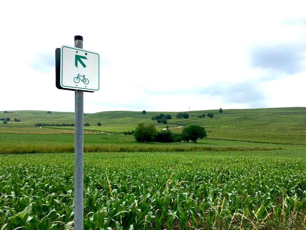 badischer weinradweg 32 - Badischer Weinradweg: Hügel, Reben & Genuss