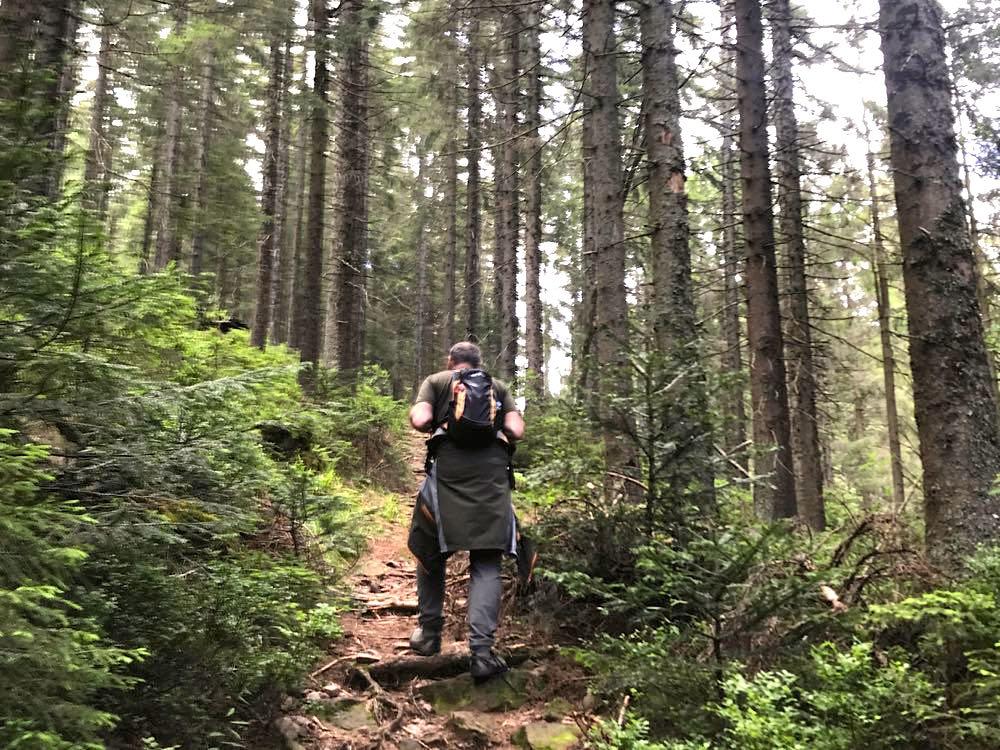 etappe4 murgquelle schliffkopf wandern schwarzwald 2 - Wandern am Schliffkopf im Schwarzwald