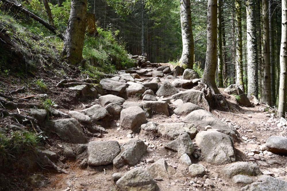 elsass vogesen wandern 18 - Elsass Tipps: Wandern in den Vogesen