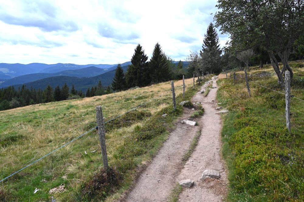 elsass vogesen wandern 3 - Elsass Tipps: Wandern in den Vogesen