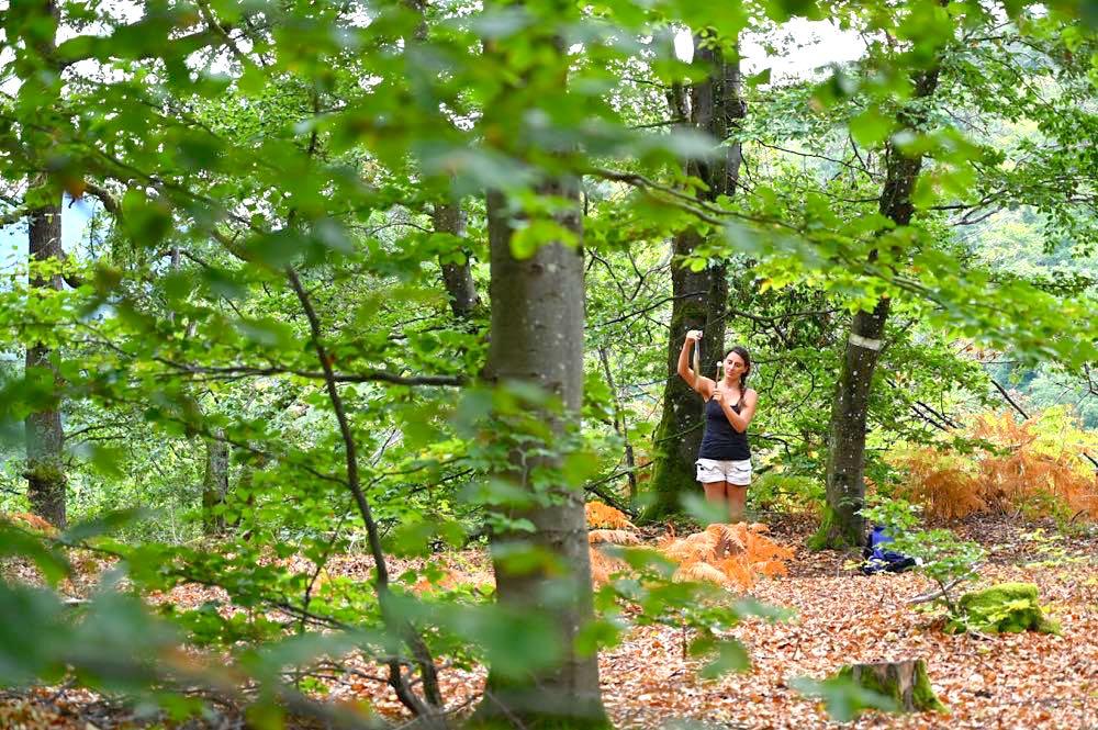 vogesen elsass urlaub tipps 23 - Vogesen Tipps: Natur, Outdoor und Nachhaltigkeit