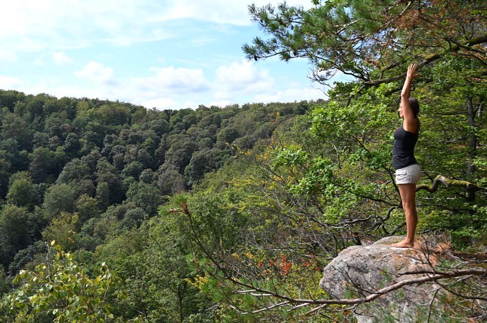 vogesen elsass urlaub tipps 28 - Vogesen Tipps: Natur, Outdoor und Nachhaltigkeit