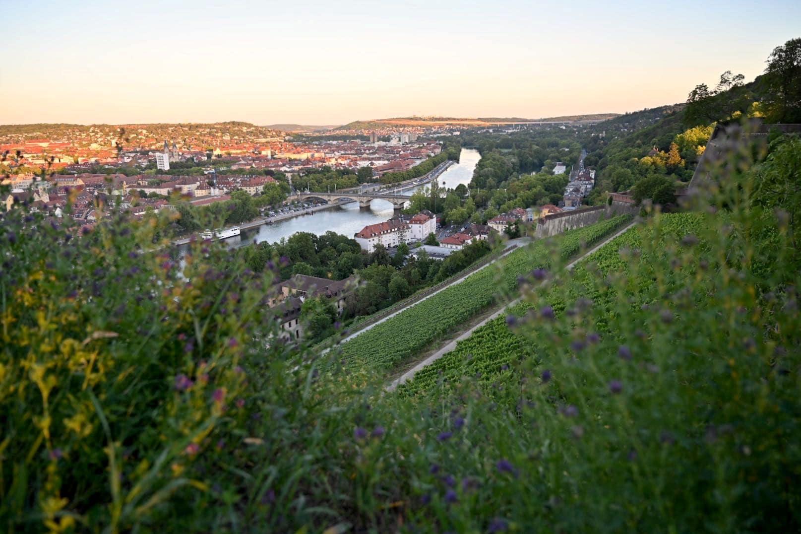 wuerzburg sehenswuerdigkeiten tipps 15 - Würzburg: Sehenswürdigkeiten und Tipps