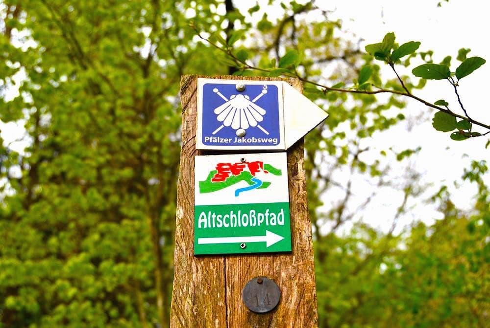 altschlossfelsen altschlosspfad 7 - Altschlossfelsen: Wandern auf dem Altschlosspfad