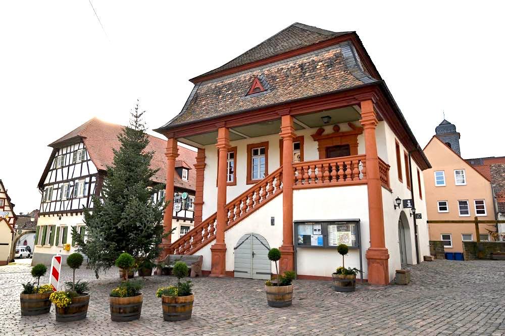 freinsheim pfalz 17 - Freinsheim an der Deutschen Weinstraße