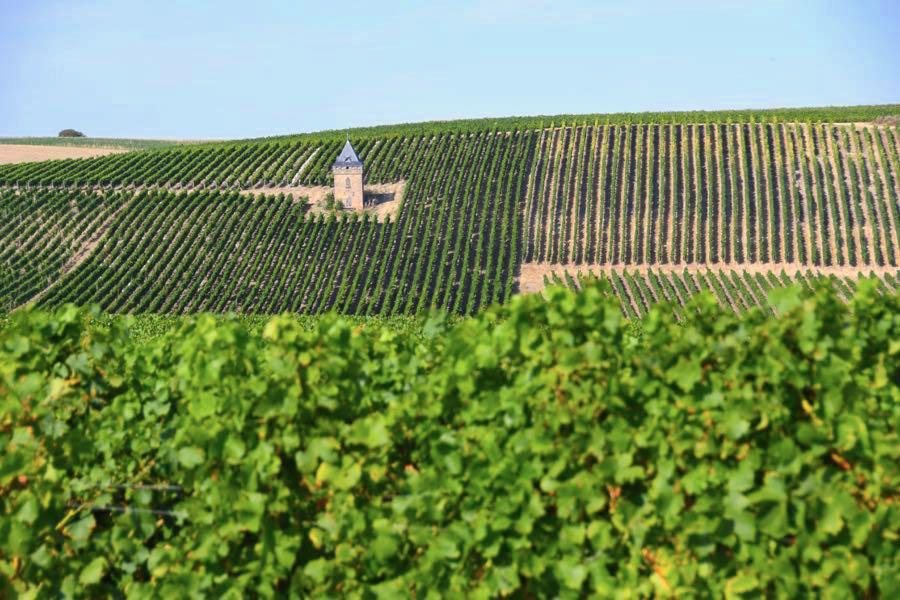 alzeyer land - Süddeutschland: 12 schöne Regionen & Reiseziele