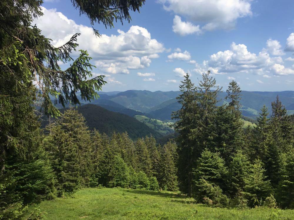 belchensteig geniesserpfad schwarzwald 1 - Genießerpfad Belchensteig im Schwarzwald