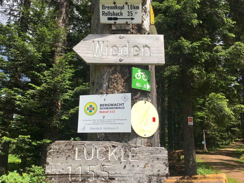 belchensteig geniesserpfad schwarzwald 13 - Genießerpfad Belchensteig im Schwarzwald