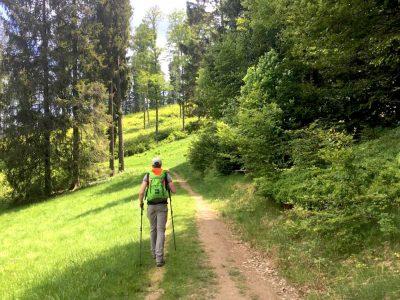 Genießerpfad Belchensteig im Schwarzwald
