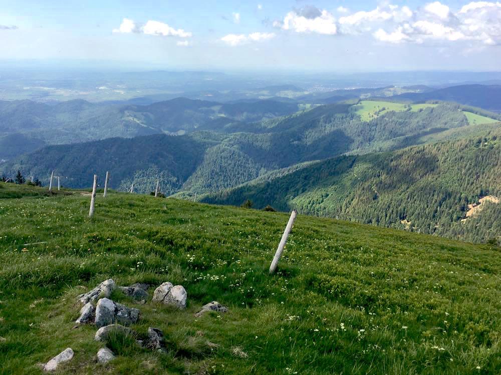 belchensteig geniesserpfad schwarzwald 3 - Genießerpfad Belchensteig im Schwarzwald