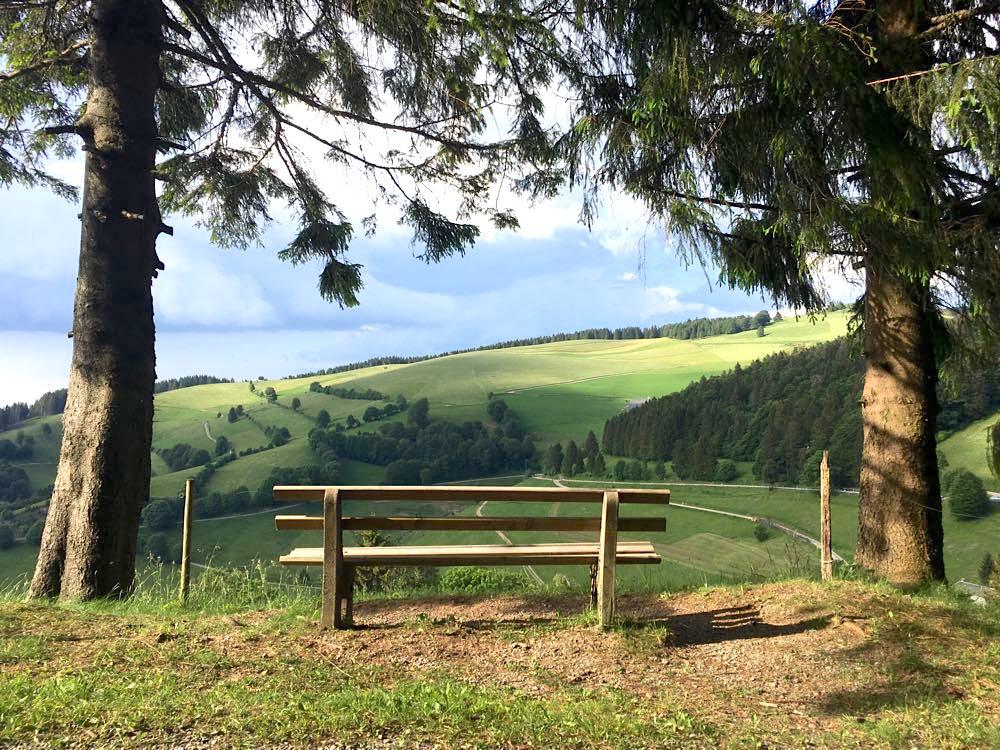 belchensteig geniesserpfad schwarzwald 7 - Genießerpfad Belchensteig im Schwarzwald