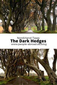 dark hedges 200x300 - Dark Hedges: Highlight in Nordirland