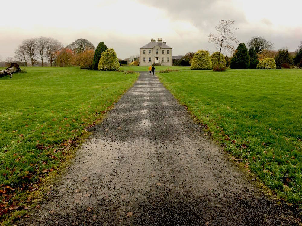 dark hedges nordirland 6 - Dark Hedges: Highlight in Nordirland