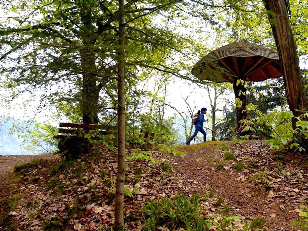 gernsbacher sagenweg murgtal wandern 4 - Gernsbacher Sagenweg im Schwarzwald