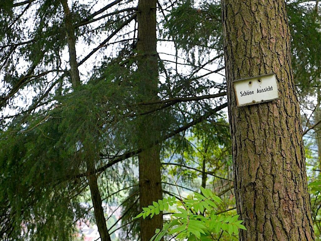 gernsbacher sagenweg murgtal wandern 8 - Gernsbacher Sagenweg im Schwarzwald