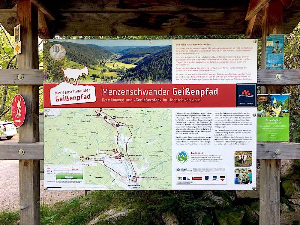 menzenschwander geissenpfad 12 - Menzenschwander Geißenpfad im Schwarzwald