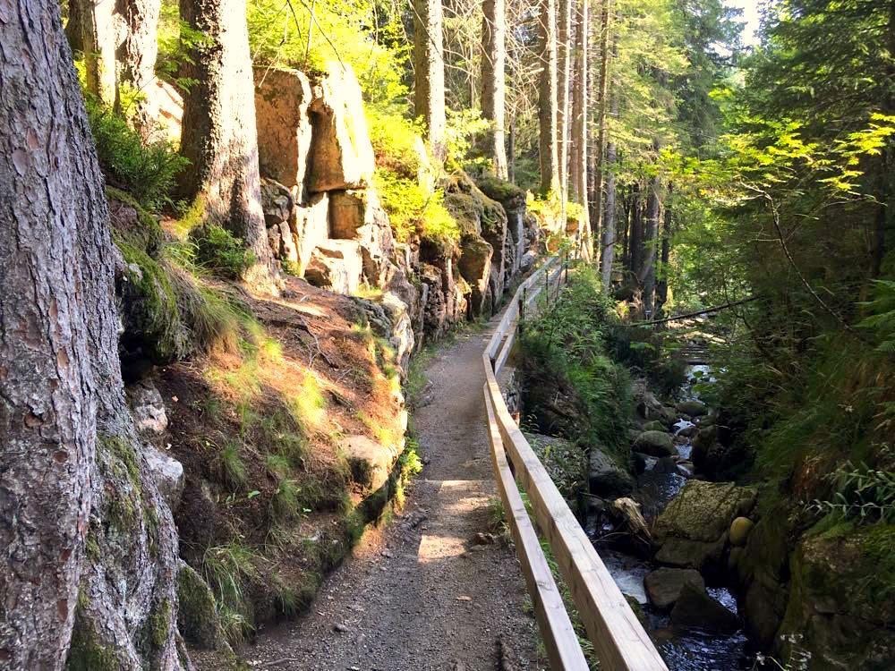 menzenschwander geissenpfad 2 - Menzenschwander Geißenpfad im Schwarzwald