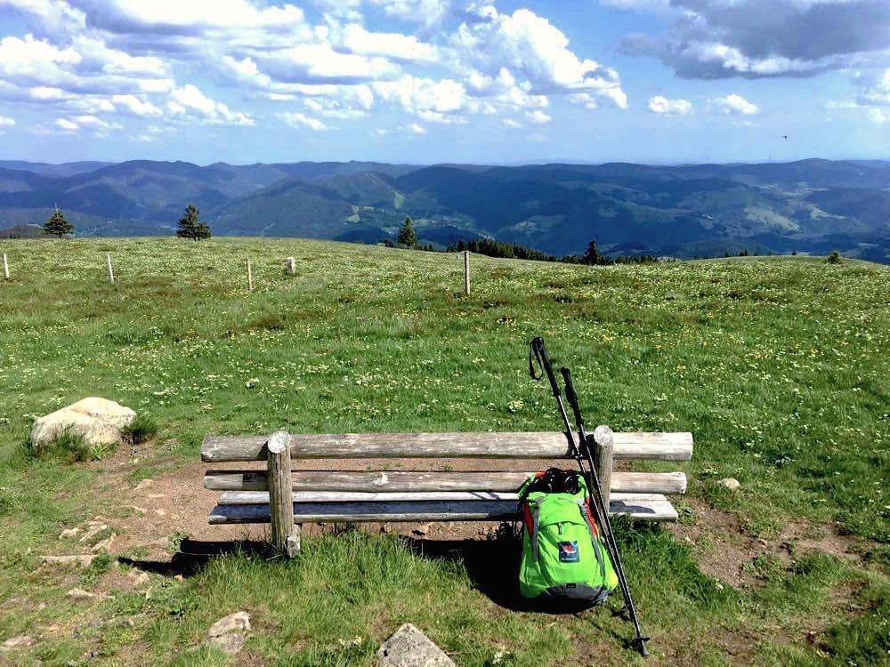 10 Wanderungen im Schwarzwald und Pfälzerwald