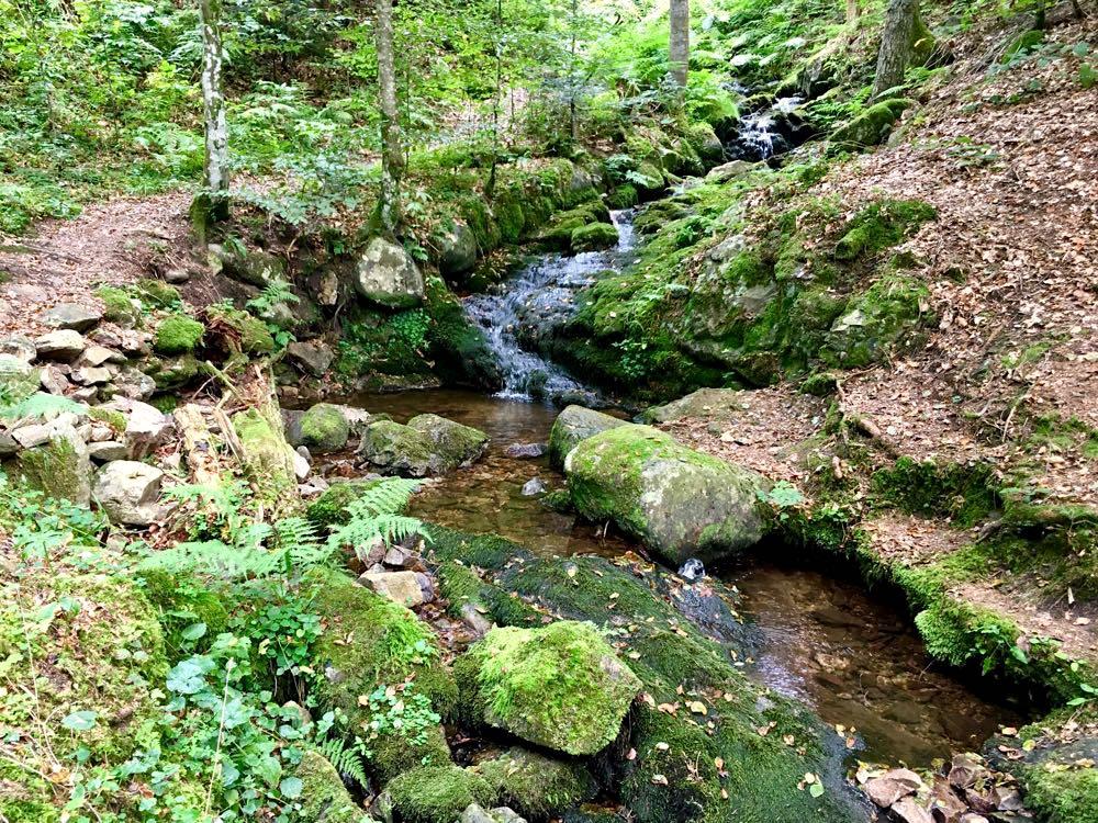 wanderungen schwarzwald pfaelzerwald 7 - 10 Wanderungen im Schwarzwald & Pfälzerwald
