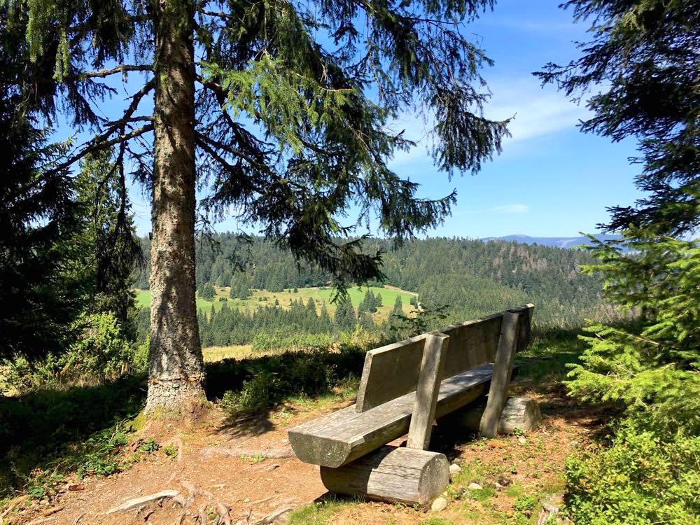 ausflugsziele schwarzwald hochschwarzwald - Ausflugsziele Schwarzwald: Highlights für den Sommer