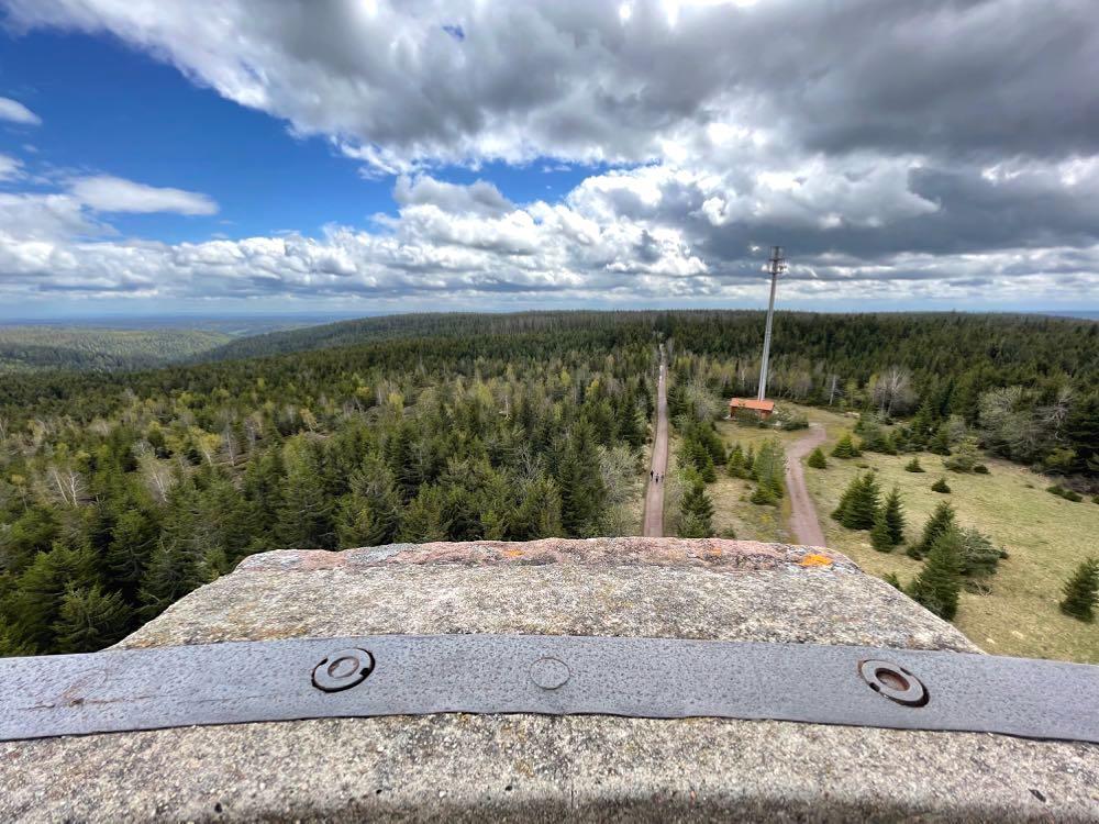 kaltenbronn hohlohturm blick kaltebronn - Kaltenbronn: 7 Schwarzwald-Tipps für Familien