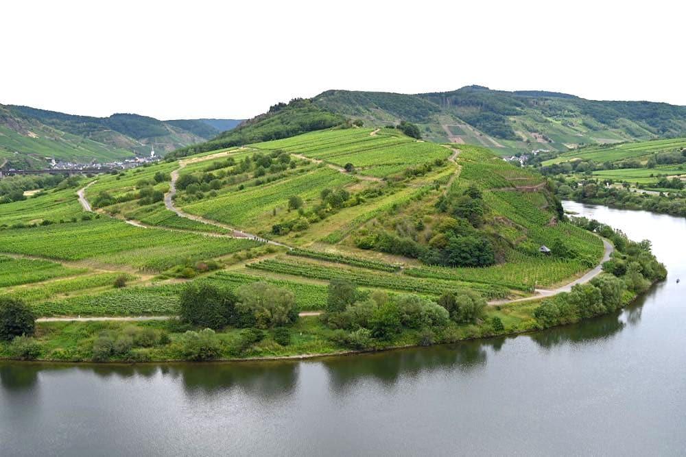 moselschleife bremm calmont mosel 5 - Moselschleife: Bremm, Calmont & Aussichtspunkt