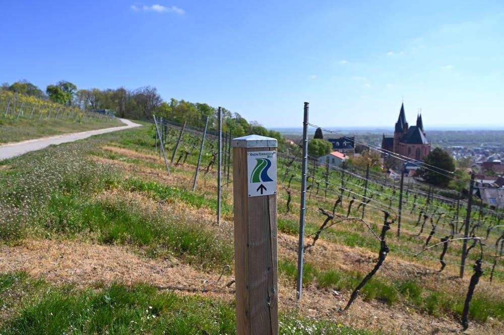 sehenswuerdigkeiten ausflugsziele rheinhessen 20 - Sehenswürdigkeiten & Ausflugsziele in Rheinhessen