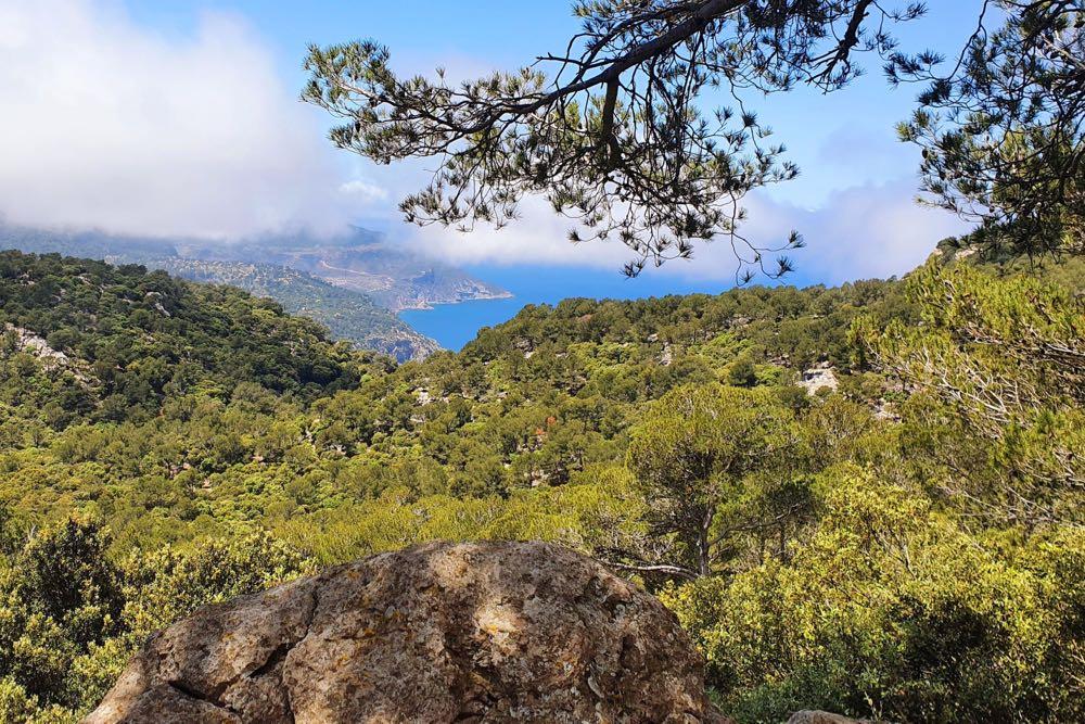 mallorca ausflugsziele wanderung cami sarxiduc - 10 Mallorca Ausflugsziele, Highlights & Tipps