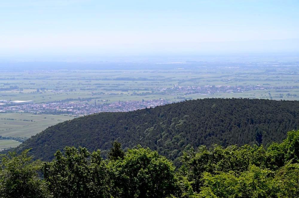 pfaelzerwald sehenswuerdigkeiten 27 - Pfälzerwald: Sehenswürdigkeiten & Ausflugsziele