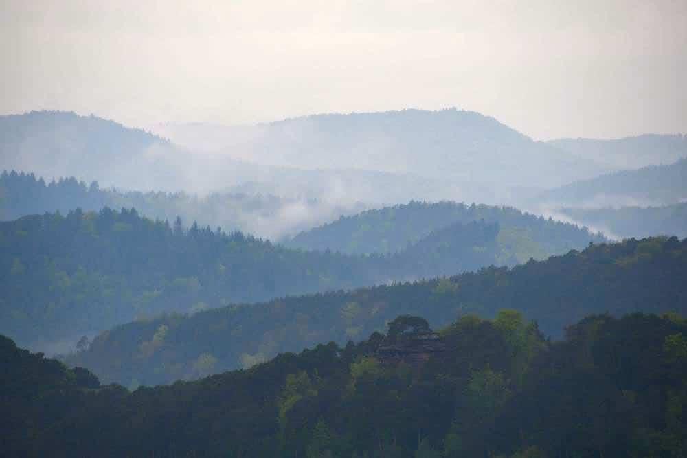 pfaelzerwald sehenswuerdigkeiten 8 - Pfälzerwald: Sehenswürdigkeiten & Ausflugsziele