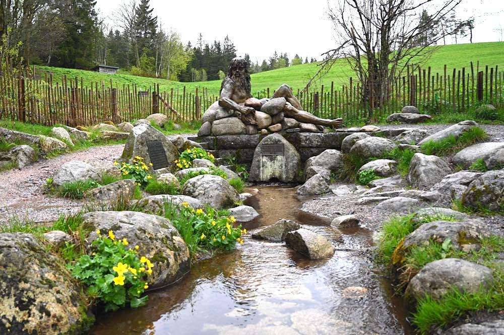 wasserweltensteig schwarzwald 17 - Wasserweltensteig: Quellen, Bäche und Wasserfälle