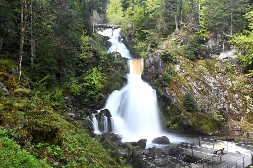 wasserweltensteig schwarzwald 22 - Wasserweltensteig: Quellen, Bäche und Wasserfälle