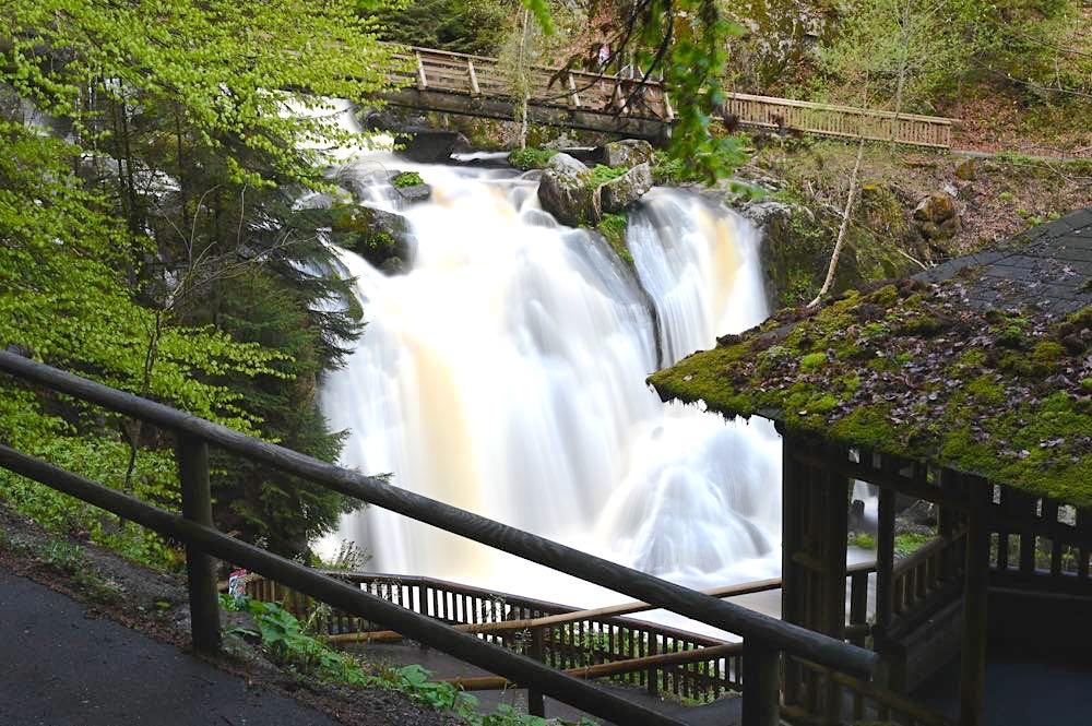wasserweltensteig schwarzwald 23 - Wasserweltensteig: Quellen, Bäche und Wasserfälle