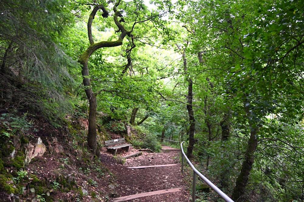 rotenfels rheingrafenstein nahe wandern 20 - Rotenfels & Rheingrafenstein - Wandern im Nahetal