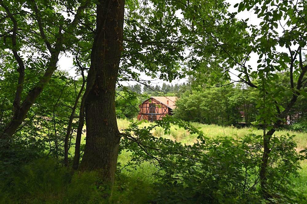 rotenfels rheingrafenstein nahe wandern 21 - Rotenfels & Rheingrafenstein - Wandern im Nahetal