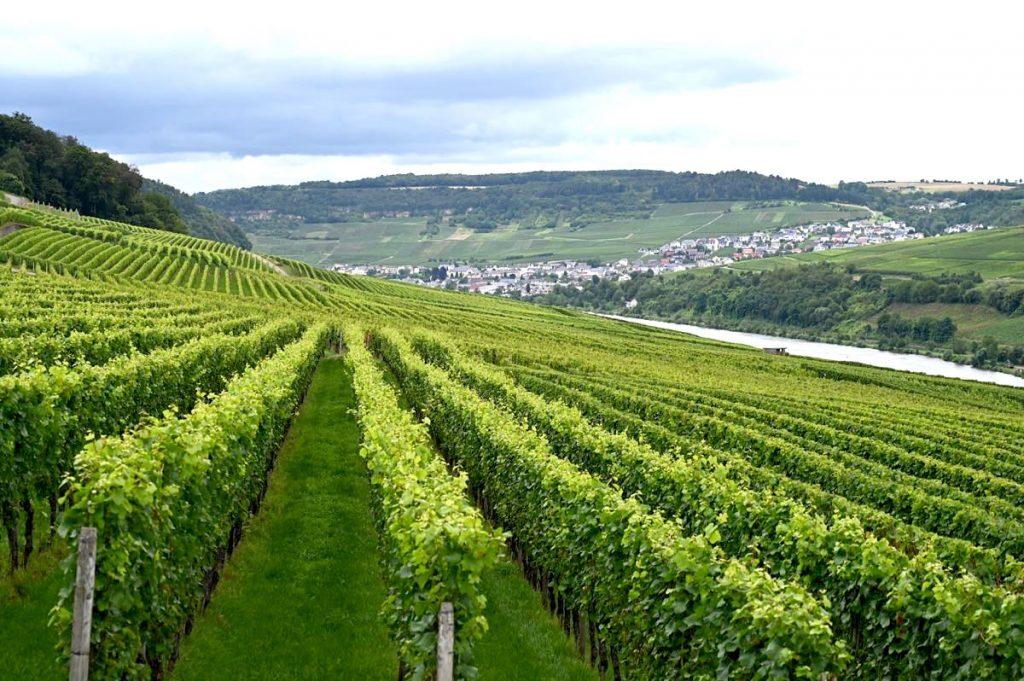 luxemburg sehenswuerdigkeiten 20 1024x681 - Luxemburg: Sehenswürdigkeiten, Highlights und Tipps