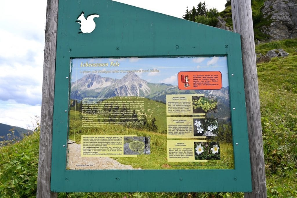 tannheimer tal wandern 4 1024x682 - Tannheimer Tal: Wandern, Hütten & Seen in Tirol