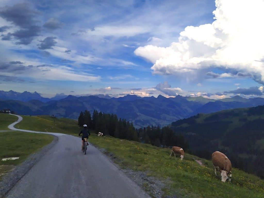 kitzbueheler alpen 24 1024x768 - Kitzbüheler Alpen: Mountainbiken in Tirol