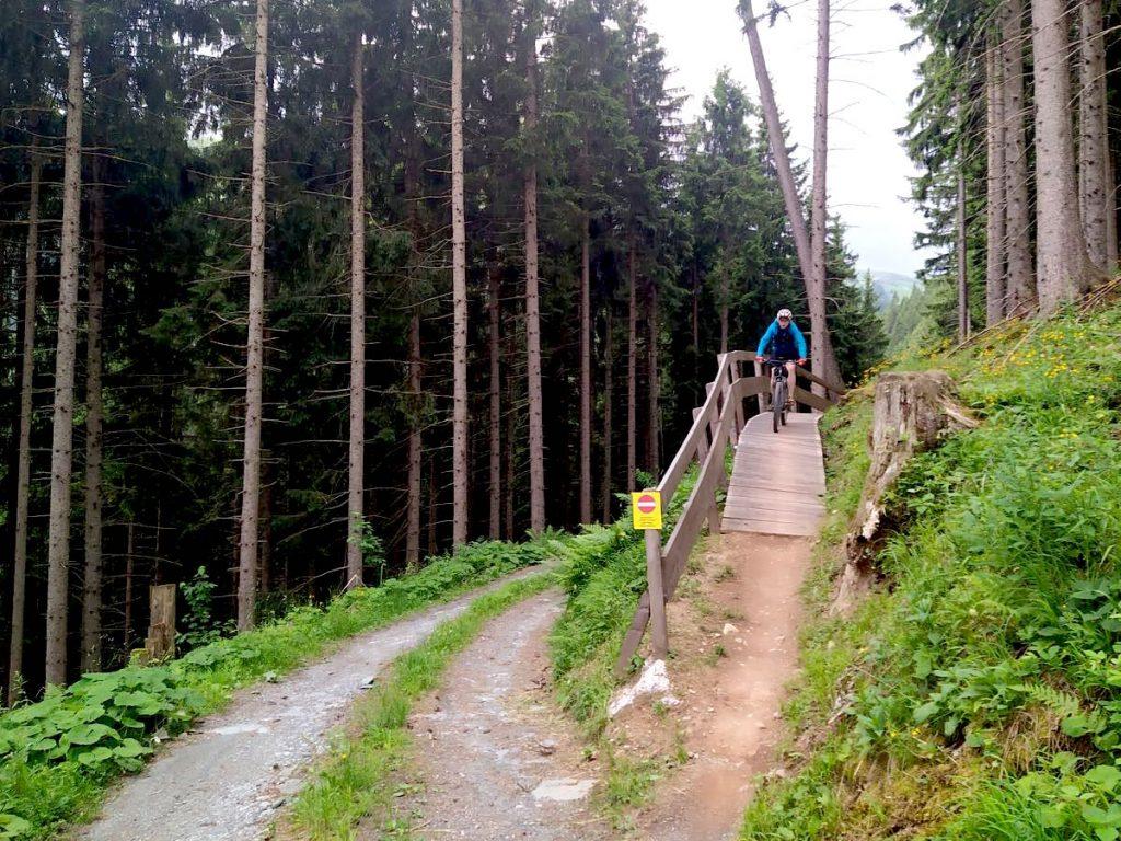 kitzbueheler alpen 26 1024x768 - Kitzbüheler Alpen: Mountainbiken in Tirol