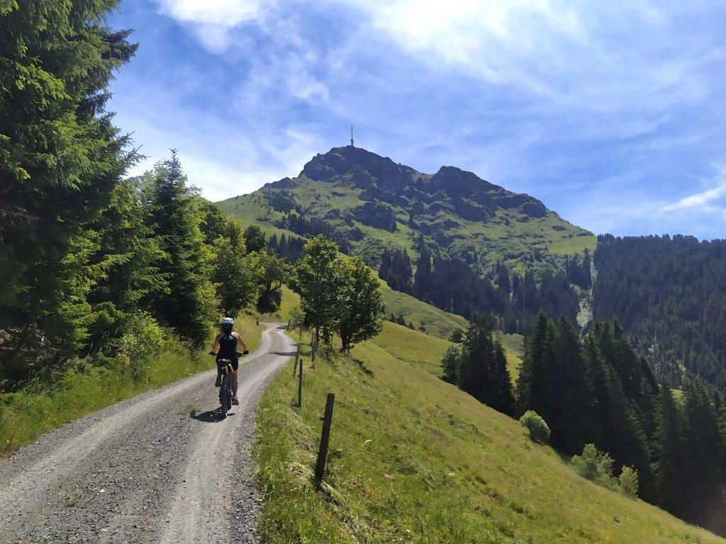 kitzbueheler alpen 32 1024x768 - Kitzbüheler Alpen: Mountainbiken in Tirol