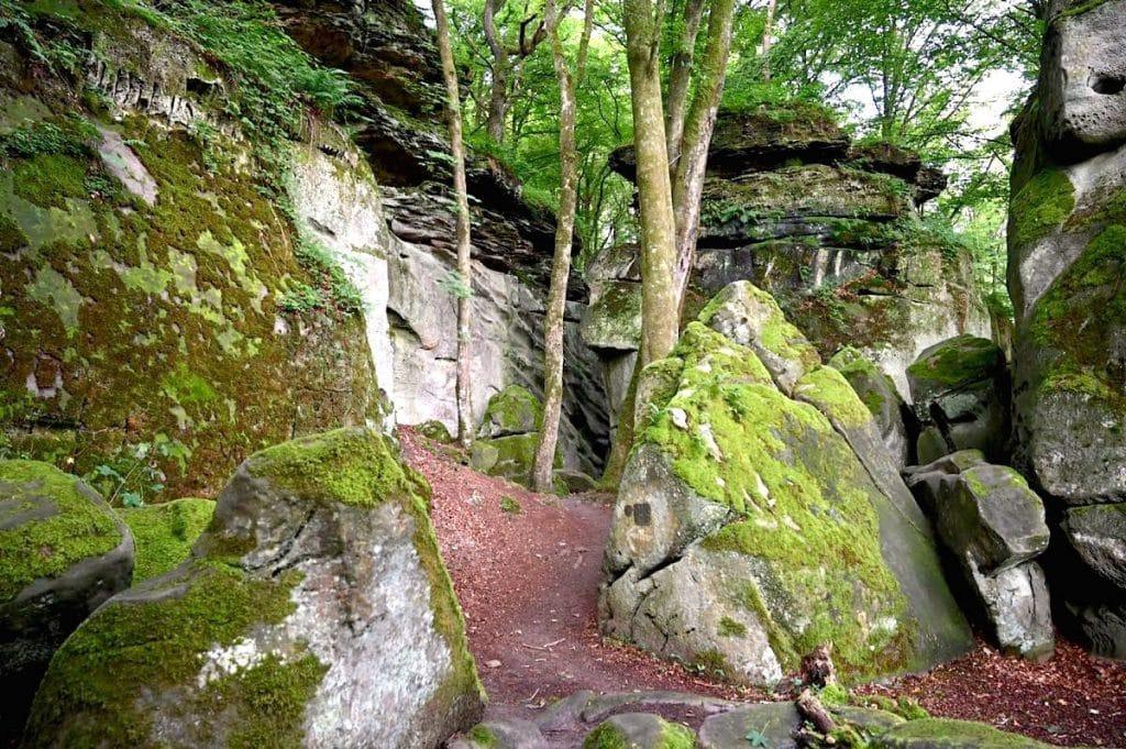 muellerthal luxemburgische schweiz 1 - Müllerthal: Wandern in der luxemburgischen Schweiz