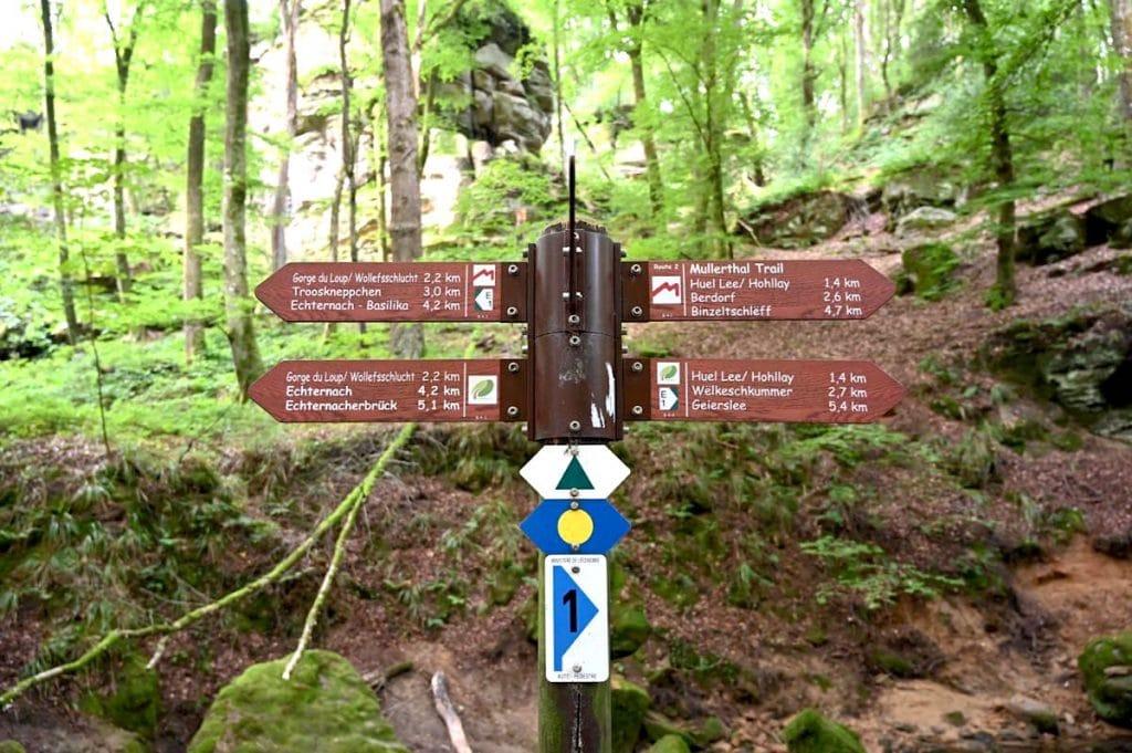 muellerthal luxemburgische schweiz 16 1024x681 - Müllerthal: Wandern in der luxemburgischen Schweiz